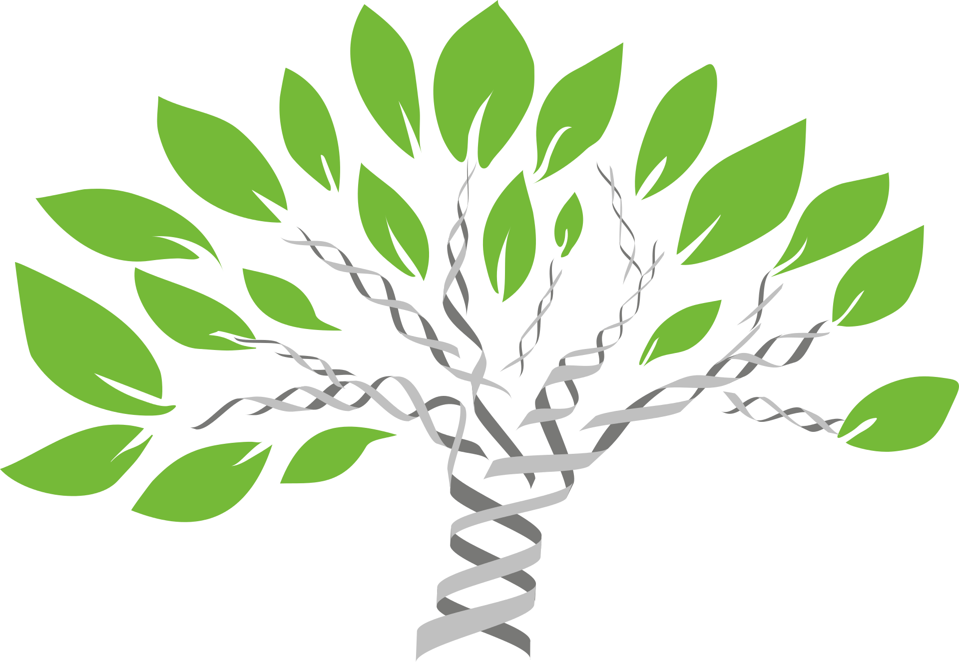 Find the perfect gene tree